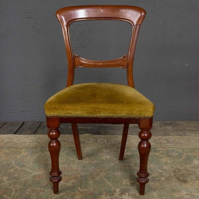 Single Mahogany Side Chair, William IV English - Image 3 of 11