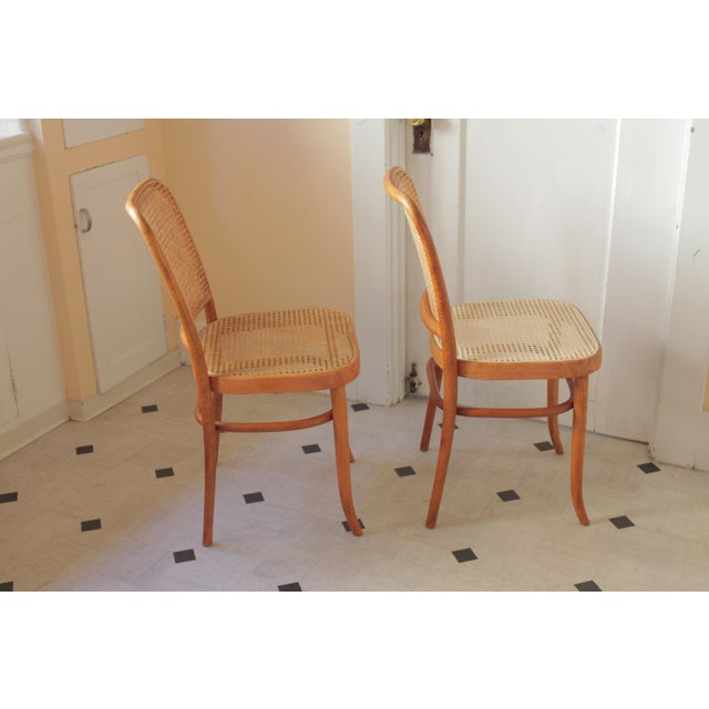 Mid-Century Modern Josef Hoffmann 811 Prague Chairs - A Pair For Sale - Image 3 of 8