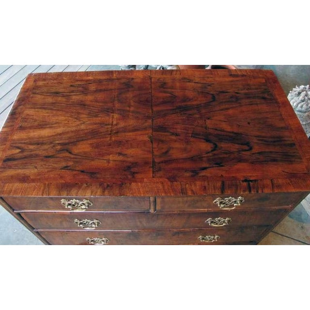 English Traditional A Handsome English George II Walnut Veneered and Oak 5-Drawer Chest For Sale - Image 3 of 3