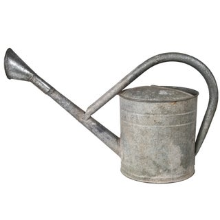 Vintage European Bat Watering Can