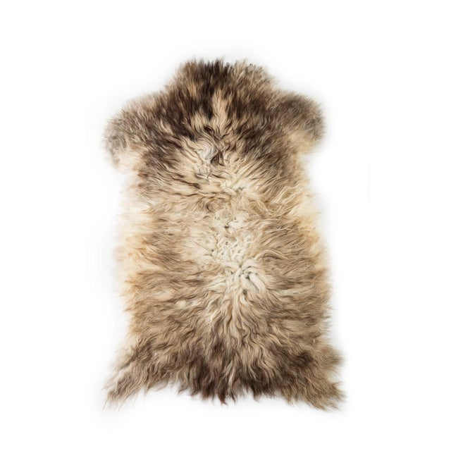 "Lights Contemporary Natural Wool Sheepskin Pelt - 2'0""x3'0"" For Sale - Image 7 of 7"