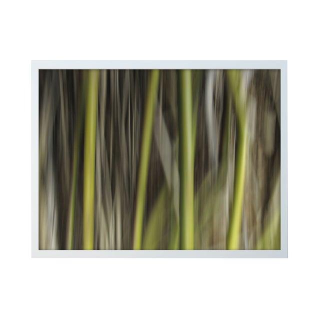 """Ofer Mizrachi """"34"""" Framed Photo Print - Image 1 of 3"""
