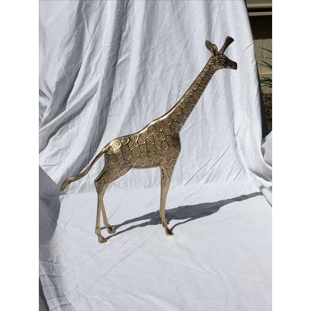 Brass Giraffe - Large - Image 5 of 5
