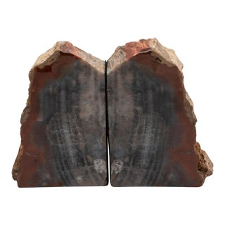 Petrified Wood Bookends - A Pair For Sale