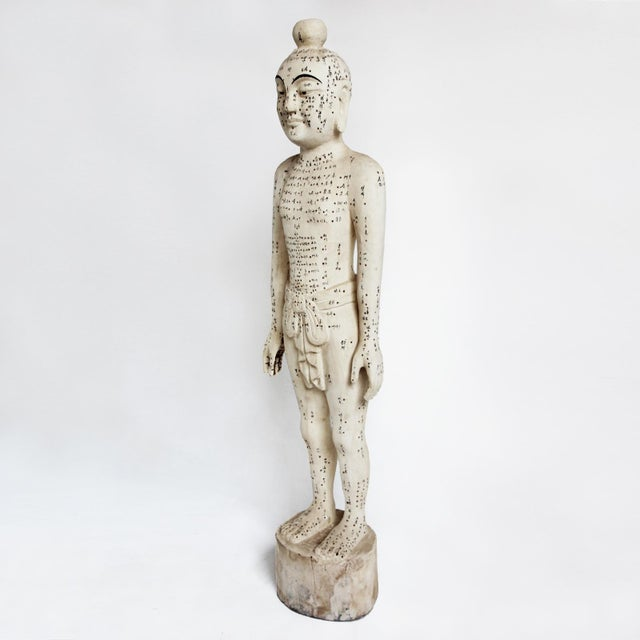 Asian Chinese Acupuncture Statue XL Male For Sale - Image 3 of 5