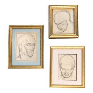 Gallery Wall Collection 3 Classical Charcoal Drawings Face Studies For Sale