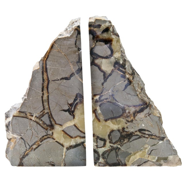 Pair Of Polished Septarian Stone Bookends - Image 1 of 4