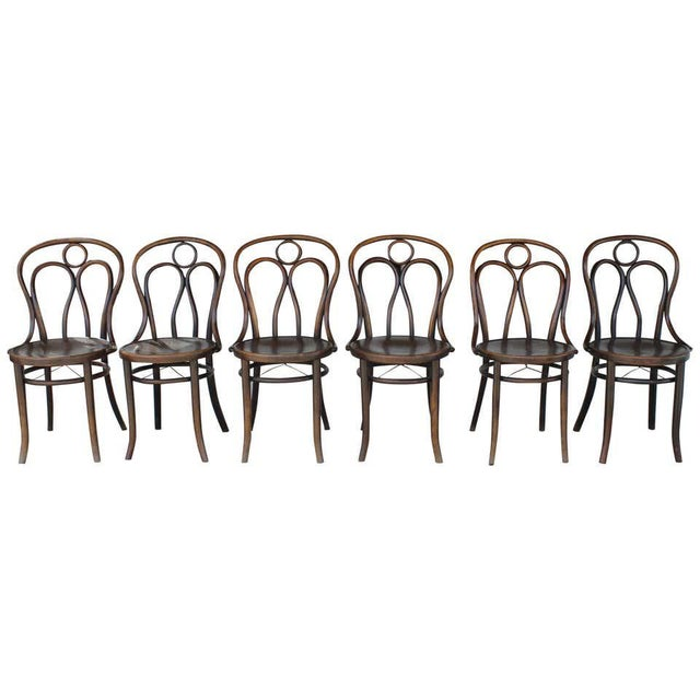 Mundus and J J Kohn Ltd Bentwood Chairs - Set of 6 For Sale - Image 12 of 12