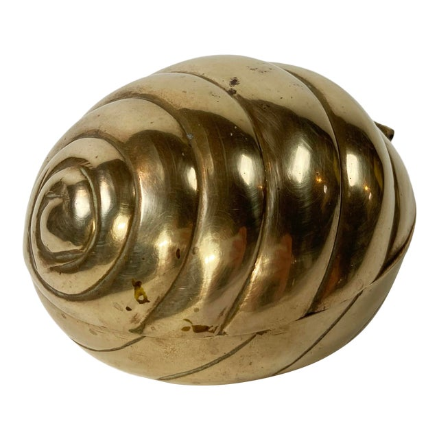 Hinged Brass Shell Trinket Box For Sale