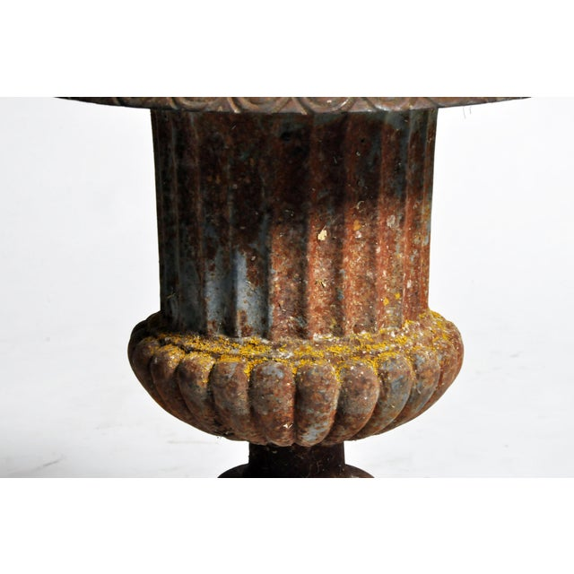 Early 20th Century Cast Iron Planter For Sale - Image 12 of 13