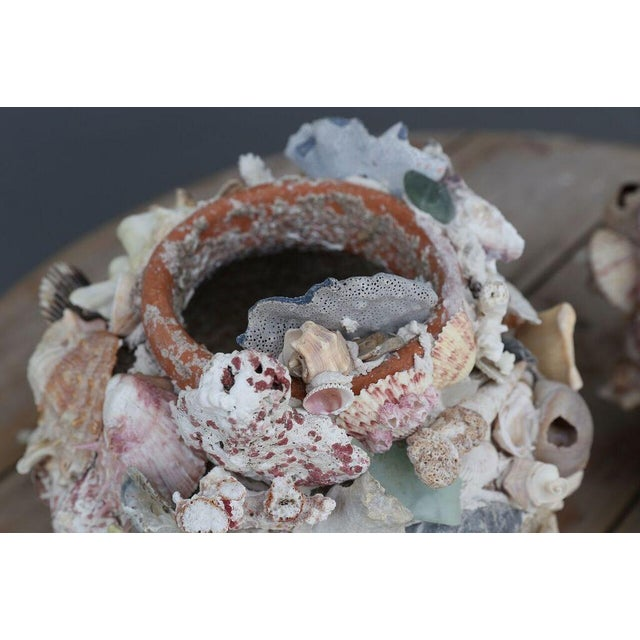 Shell-Covered Terracotta Cache-Pots For Sale In Houston - Image 6 of 9