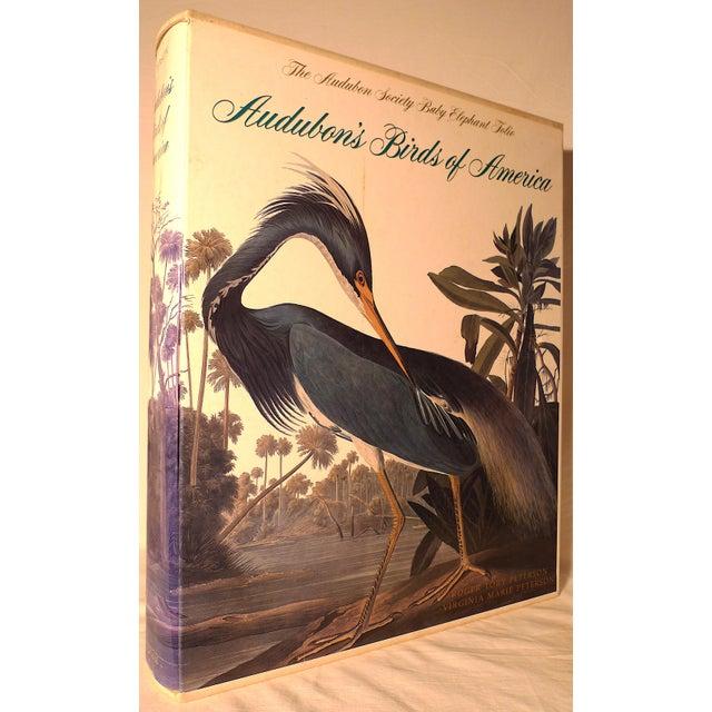 1990s Baby Elephant Illustrated Folio Book, Audubon's Birds of America For Sale - Image 12 of 12