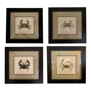 """""""H.N. Zoologie Crustacés"""" Framed Hand Colored Crab Engravings by Savigny - Set of 4 For Sale"""