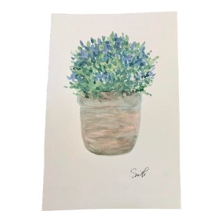 """Nancy Smith Original """"Old World"""" Watercolor Botanical For Sale"""