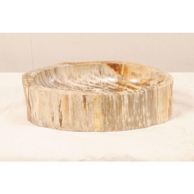 Mid 20th Century Organic Modern Polished Petrified Wood Sink For Sale - Image 5 of 9