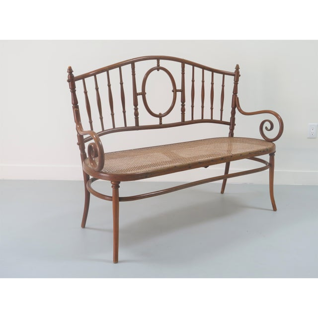 Early 20th Century Thonet Style Bentwood and Caned Settee For Sale - Image 13 of 13