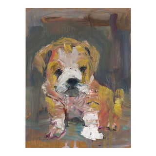 Contemporary Painted Portrait, Puppy With Wrinkles For Sale