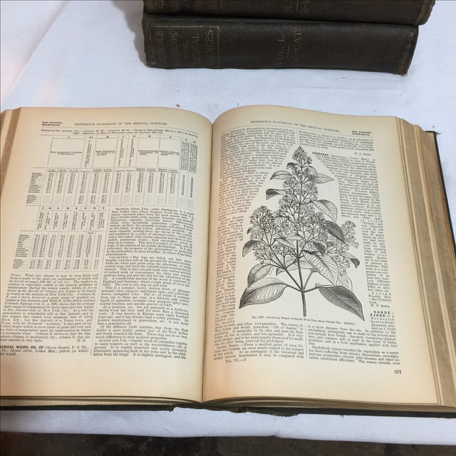 Large Antique Medical Books - Set of 5 - Image 7 of 9