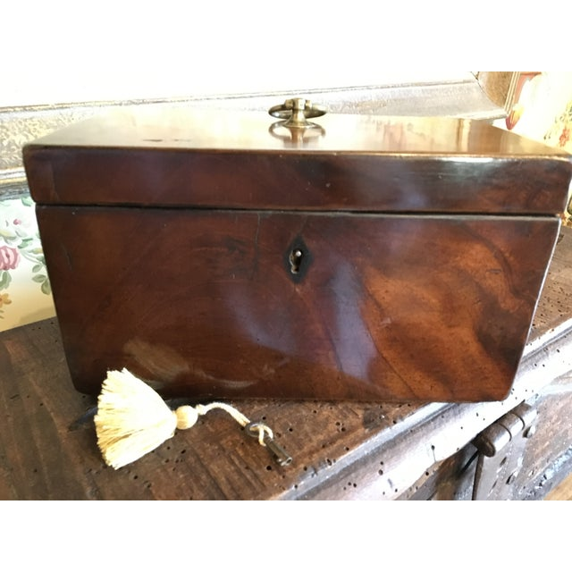 1800 English Regency Flamed Mahogany Double Tea Caddy For Sale - Image 10 of 12