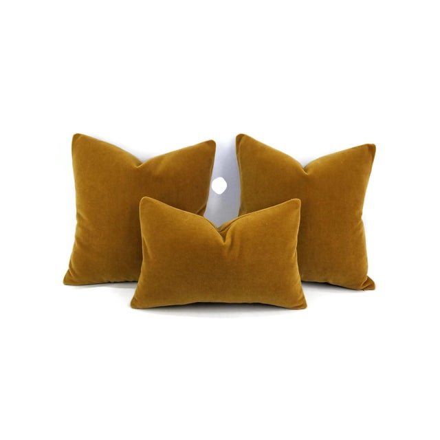 From S. Harris is Ankara Mohair Velvet in the color Amber. This is a luxurious mohair velvet in a stunning solid rich...