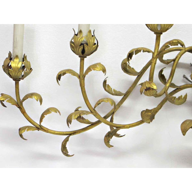 Vintage 7 Arm Gold Painted Oversized Sconce For Sale - Image 4 of 5
