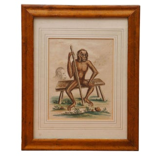"""""""Wild Man"""" Hand Colored Engraving by George Edwards, 1757 For Sale"""