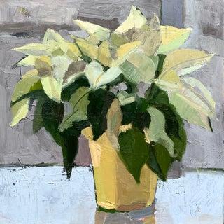 Original Oil Painting - White Poinsettia For Sale