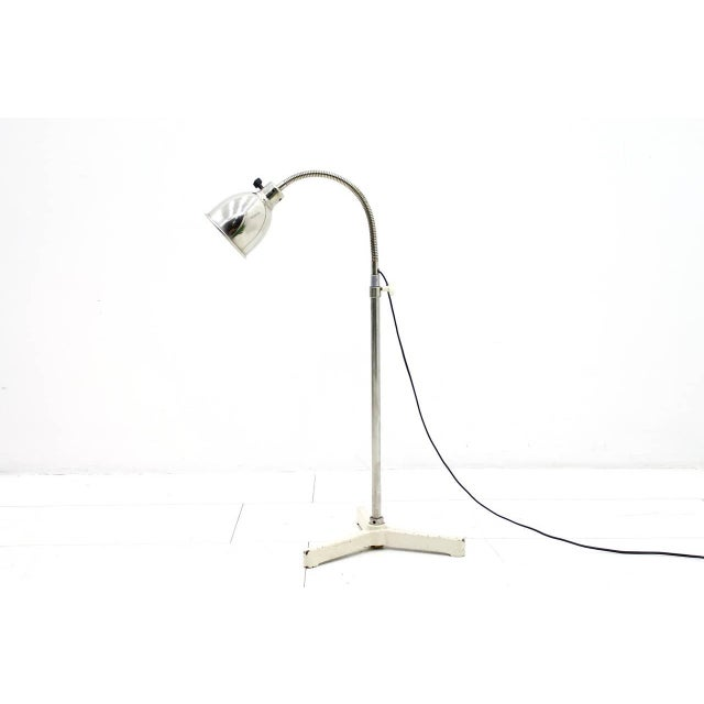 Christian Dell Floor Lamp With Gooseneck 1930s For Sale - Image 9 of 9