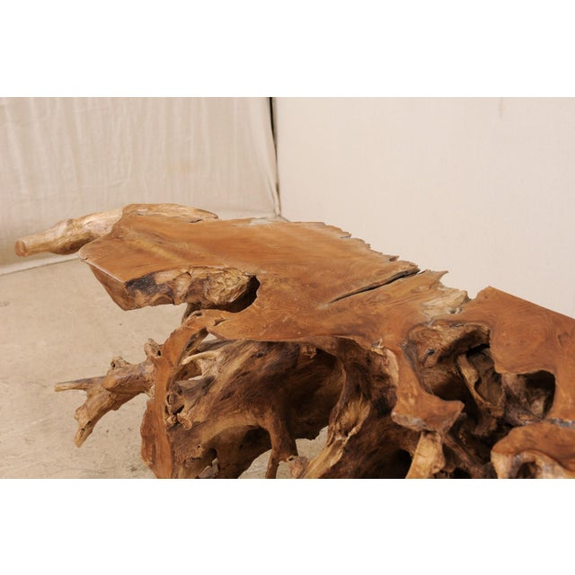 Tropical Hardwood Teak Root Console Table For Sale - Image 10 of 12