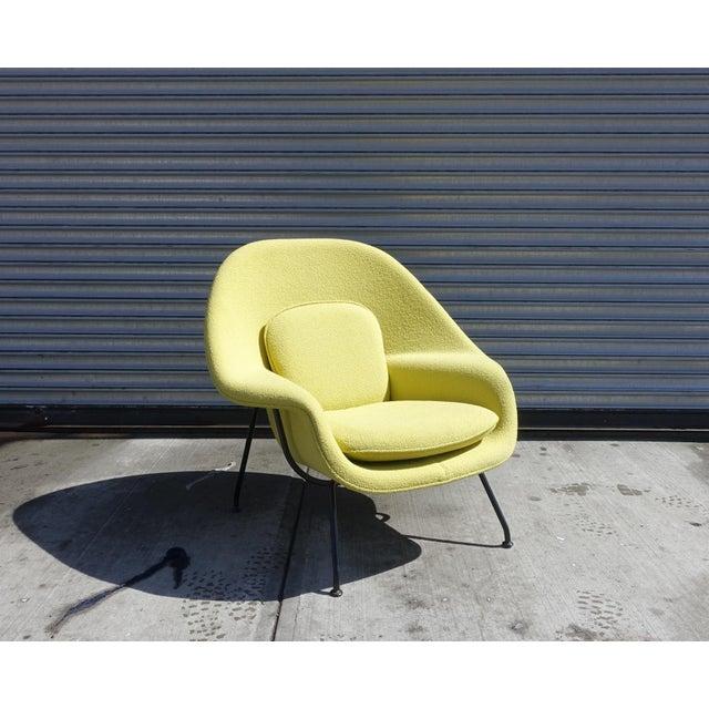 Eero Saarinen for Knoll Womb Chair - Image 2 of 4