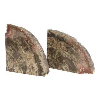 Petrified Wood Bookends - A Pair
