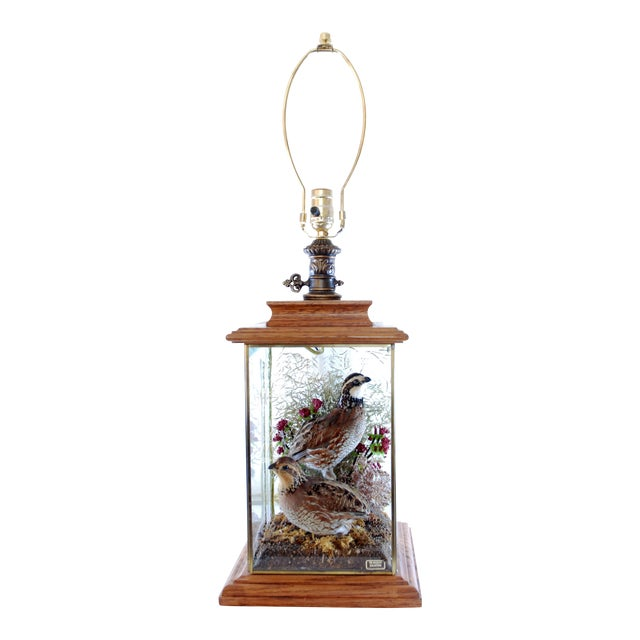 Wildlife Collection Mounted Quail Table Lamp With Oak Case