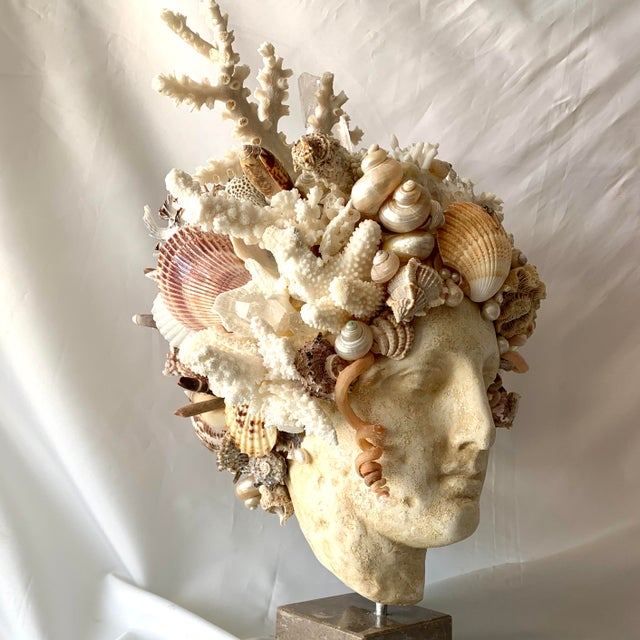 Large Shell Hygiea Bust For Sale - Image 10 of 12