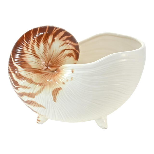 Nautilus Shell Bowl For Sale