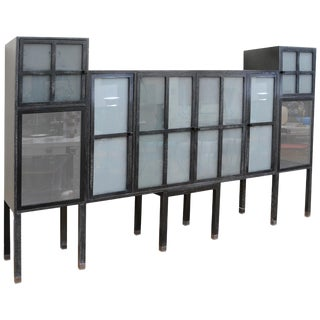 Pace Piombo Ash & Sandblasted Glass Bauhaus Cabinet For Sale