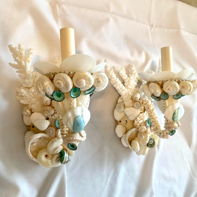 Pair fresh white Seashell sconces with flashes of jewel-tone turquoise Limpets, pearled Snails and little polished Clams....