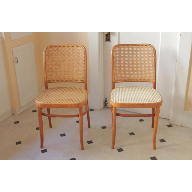 """The 811 """"Prague"""" chairs were originally designed for Thonet by Josef Hoffmann and Josef Frank in the 1920s and their..."""