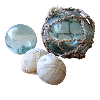 Antique Glass Floats and Fossils - Set of 4 For Sale