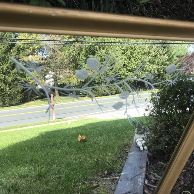 1950s Gilded Etched Glass Mirror. Must See! Mid Century Branches Etching. For Sale In Baltimore - Image 6 of 9