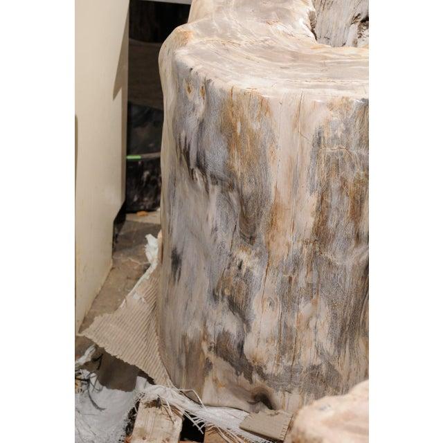 Impressively Large Petrified Wood Table Base For Sale In Atlanta - Image 6 of 12