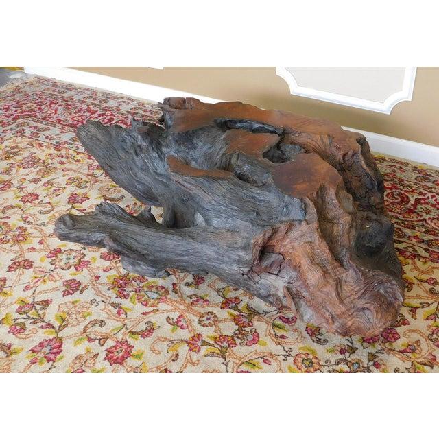 Walnut Driftwood Coffee Table Base - Image 9 of 9