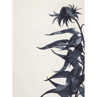 "Cynthia MacCollum, ""Stance"", Rinsed Print Monotype, Botanical, Work on Paper, Dark Blue For Sale"
