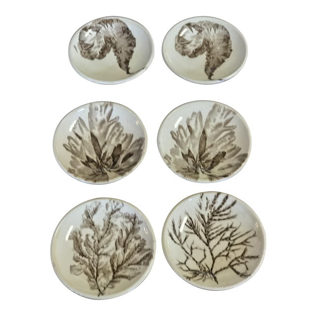 Seaweed Pattern Brown Transferware by Wedgewood For Sale