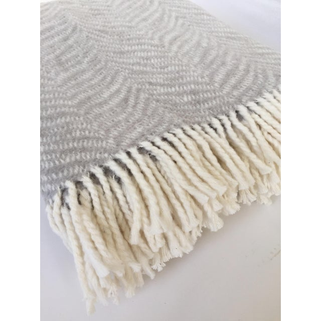 Contemporary Fringed Gray Tiger Throw Blanket For Sale - Image 3 of 6