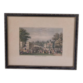19th Century Antique Framed Zoological Park Engraving For Sale