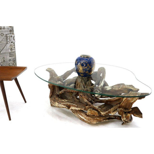 Gesso Washed and Stained Kidney Shape Glass Top Natural Driftwood Coffee Table For Sale In New York - Image 6 of 13