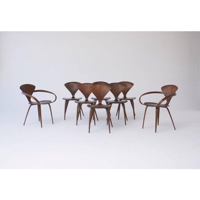 Set of Eight Norman Cherner Dining Chairs, Made by Plycraft in the Usa, 1960s For Sale - Image 9 of 9