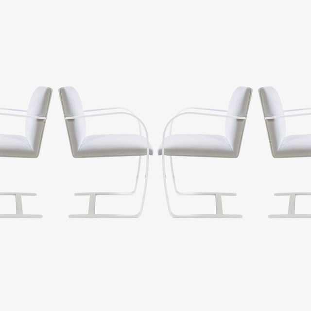 Montage Brno Flat-Bar Chairs in Dove Velvet, Lunar Gloss Frame For Sale - Image 4 of 10