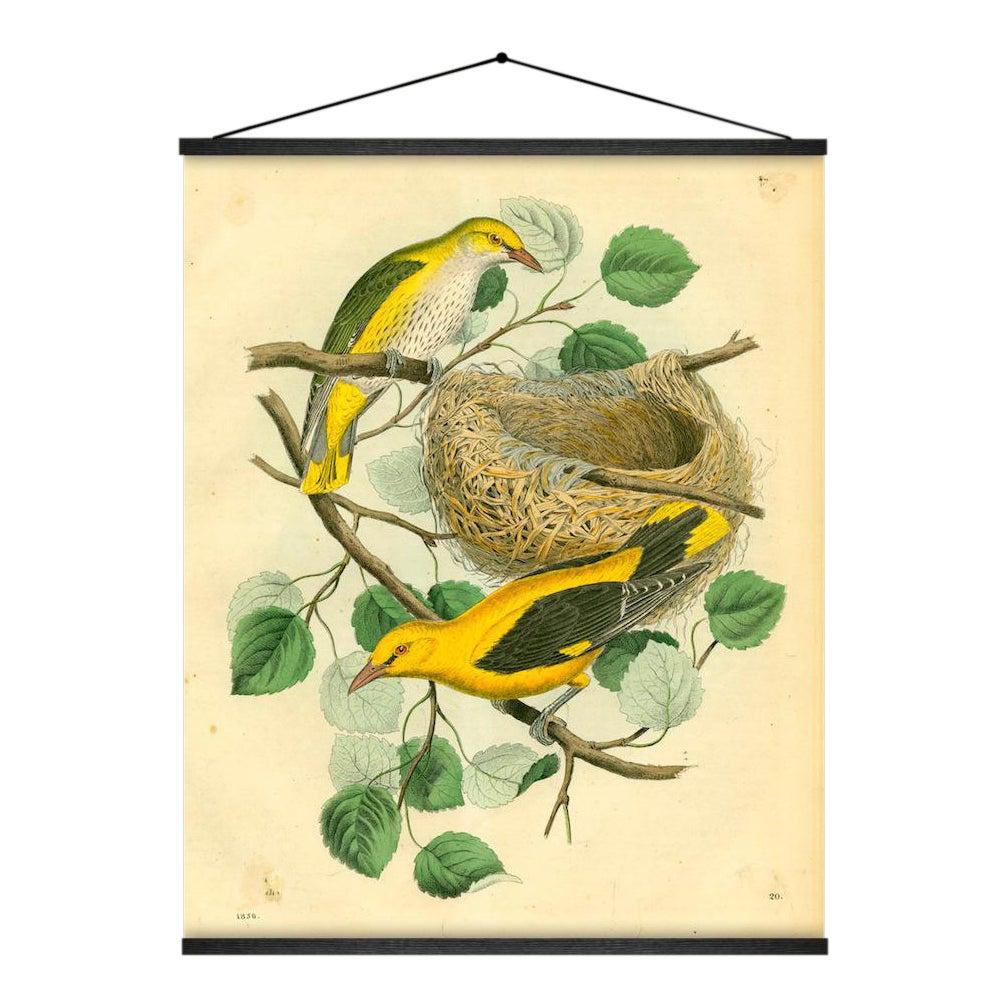 Birds & Nest Wall Hanging | Chairish