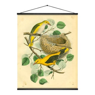 Birds & Nest Wall Hanging For Sale